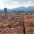 The Roofs of Lucca