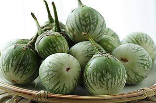 Thai-eggplants
