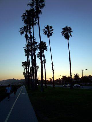 CALIFORNIA 2007 185_01