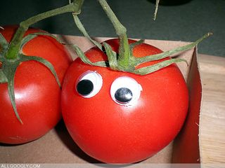 Tomatoes_3_googly_eyes
