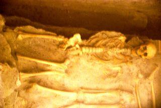 Naples skull 7