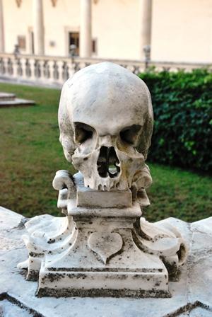 Naples skull 8