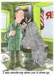 Haircut-clipart