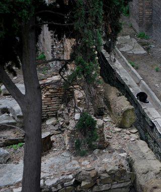 Italy 2010 131