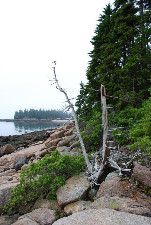 Maine 2009 192