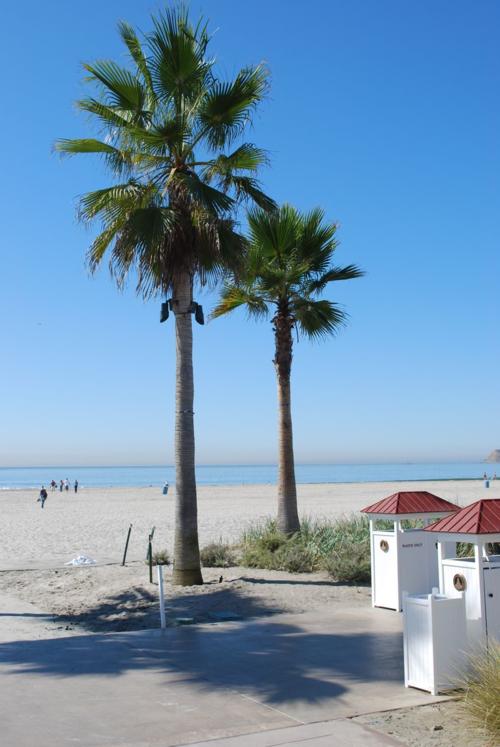 California 2008 068
