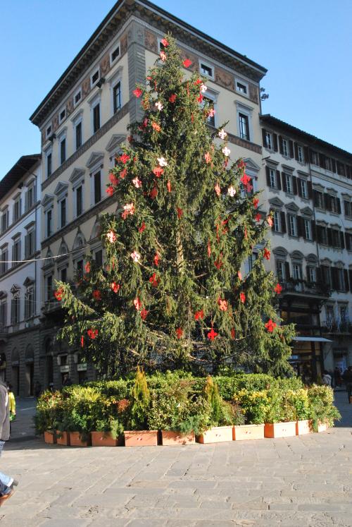 Italy 2012 020