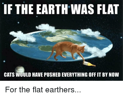 If-the-earth-was-flat-cats-would-have-pushed-everything-21413617