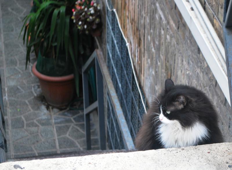 Italy 2010 140