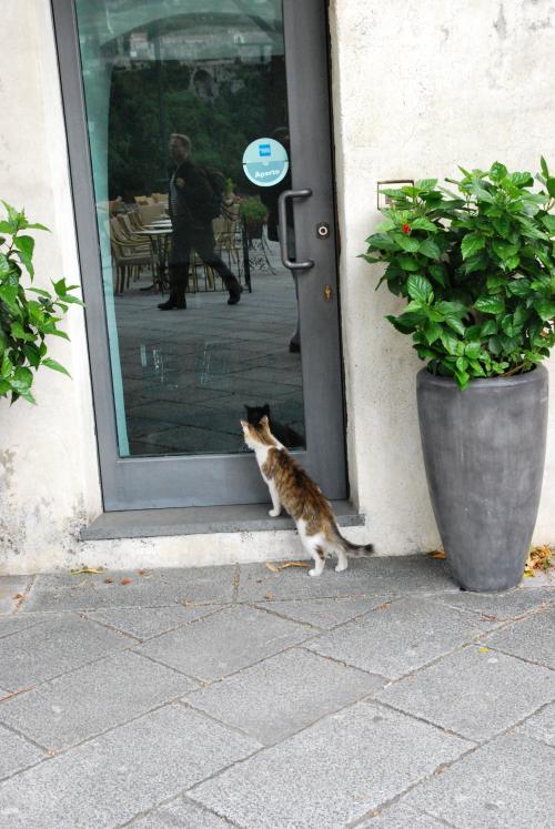 Italy 2011 day 3 074