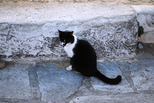Greece2009 634