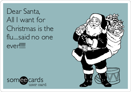 Dear-santa-all-i-want-for-christmas-is-the-flusaid-no-one-ever-7e4a1
