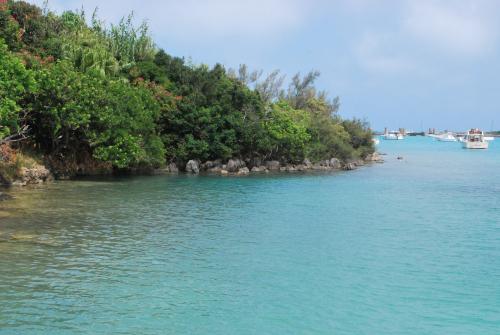 Bermuda 120