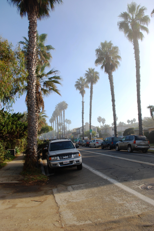 California 2008 122