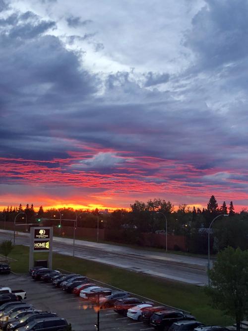 Edmonton 483