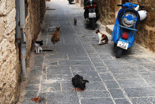 Greece2009 927
