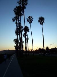 California_2007_185
