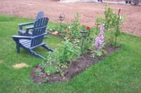 Back_garden
